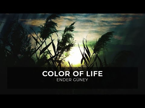 Color of Life - Ender Güney (Official Audio)