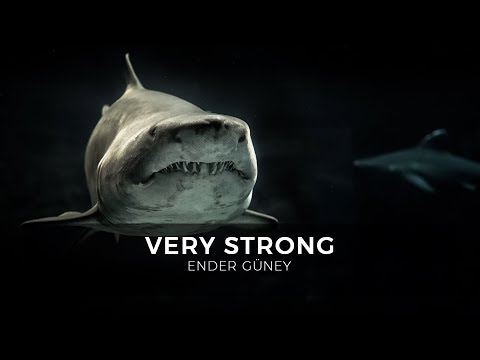 Very Strong - Ender Güney (Official Audio)